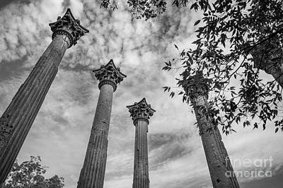 Natchez Photograph - Ruins Of Windsor In Southwest Mississippi by T Lowry Wilson
