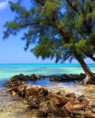 Photograph - Rum Point Cove by Jerry Hart