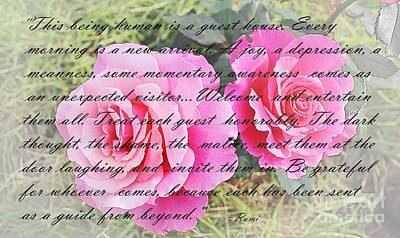 Meanness Photograph - Rumi Quote - Roses - Guide by Barbara Griffin