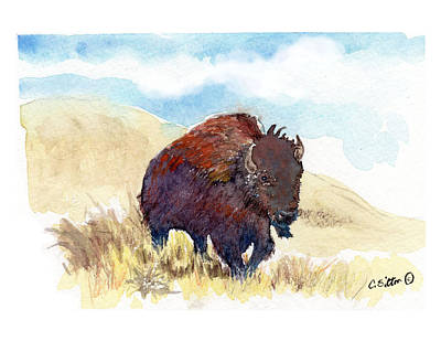 Painting - Running Buffalo by C Sitton