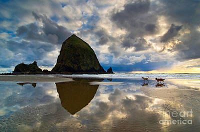 Running Free - Dogs Running In Beautiful Cannon Beach. Art Print by Jamie Pham