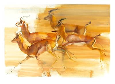Marks Painting - Running Gazelles by Mark Adlington