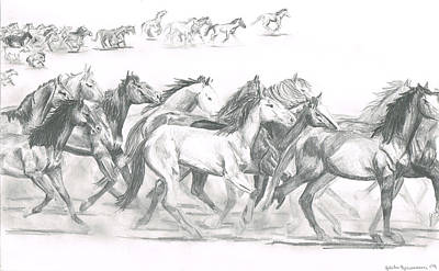 Wild Horses Drawing - Running Horses by Ashelee Rasmussen