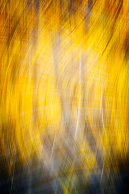 Running Naked Through A Forest Fire - Abstract Photograph Original by Duane Miller