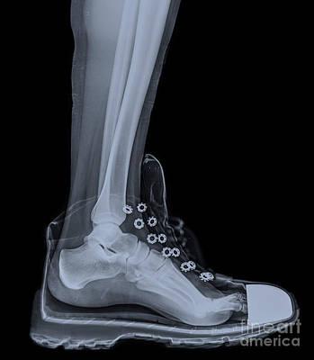 running shoe X-Ray 4 Art Print by Guy Viner
