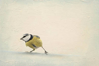 Winter Fun Mixed Media - Running Tit by Heike Hultsch