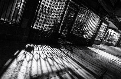 Photograph - Running With The Shadows Of The Night By Denise Dube by Denise Dube