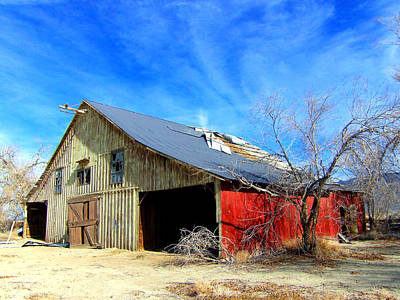 Photograph - Rural Colors by Marilyn Diaz