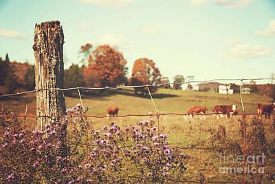 Rural Country Scene Print by Sandra Cunningham