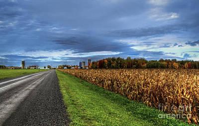Mais Photograph - Rural Drama.. by Nina Stavlund