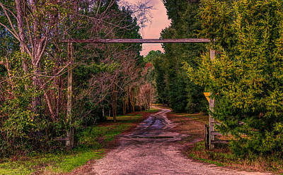 Photograph - Rural Entrance by Lewis Mann