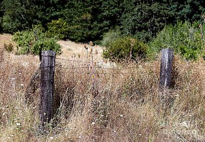 Photograph - Rural Fence by Erica Hanel