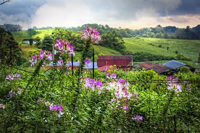 Red Roof Photograph - Rural Garden by Debra and Dave Vanderlaan