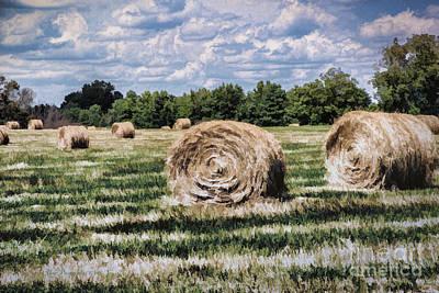 Art Print featuring the painting Rural Georgia by Linda Blair