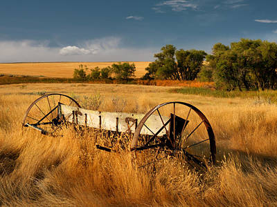 Photograph - Rural Gold by Leland D Howard