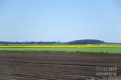 Photograph - Rural Landscape Patterns by Kennerth and Birgitta Kullman