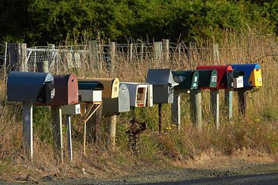 Mail Box Photograph - Rural Letterboxes, Otakou, Otago by David Wall