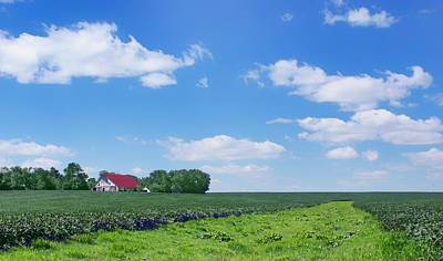 Red Roof Photograph - Rural Midwest - Summer by Nikolyn McDonald