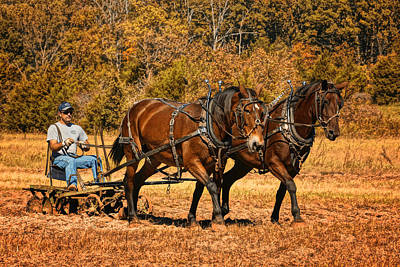 Photograph - Rural Missouri Plowing With Horses Dsc08210 by Greg Kluempers