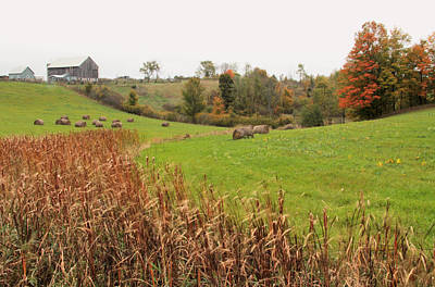 Photograph - Rural Ontario Landscape by Jim Vance