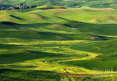 Wheat Photograph - Rural Patterns by Mike Dawson