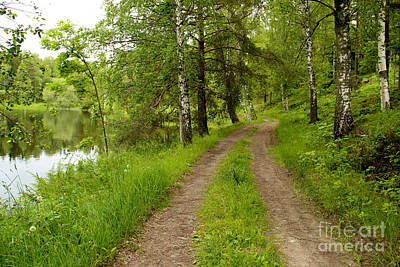 Trees Photograph - Rural Road By A Lake by Kerstin Ivarsson