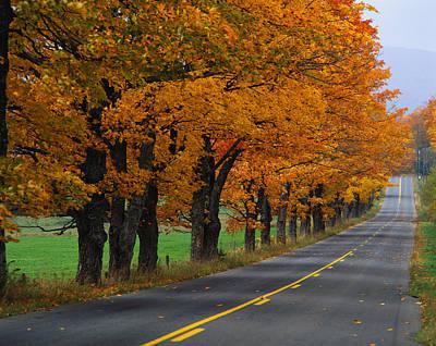 Rural Road In Autumn Art Print