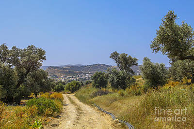 Photograph - Rural Road In Crete by Patricia Hofmeester