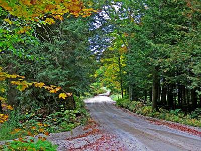 Photograph - Rural Country Road by MTBobbins Photography