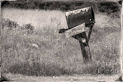 Mailbox Photograph - Rural Route Mail Call  by Jean OKeeffe Macro Abundance Art