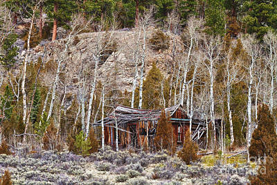 Bo Insogna Photograph - Rural Rustic Rundown Rocky Mountain Cabin by James BO  Insogna