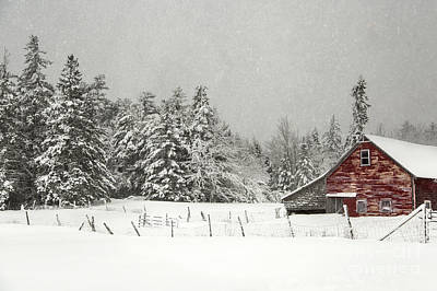 Photograph - Rural Snow by Karin Pinkham