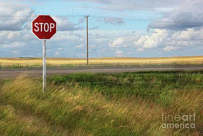 Rural Stop Sign On The Prairies  Art Print by Sandra Cunningham