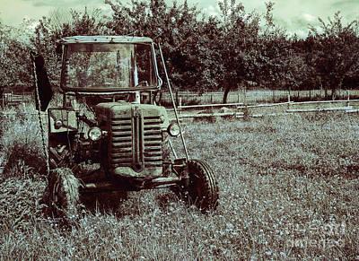 Photograph - Rural Summer by Jutta Maria Pusl