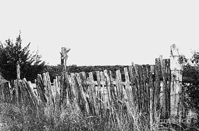 Photograph - Rural - Texas Fence - Luther Fine Art by Luther Fine Art