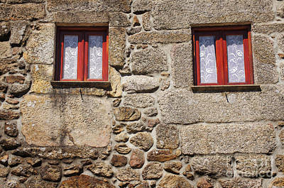 Rural Windows Art Print by Carlos Caetano