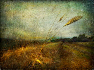 Ruralscape #19. The Victory Of Silence Art Print by Alfredo Gonzalez