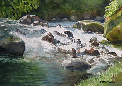 Rushing River In Costa Rica Print by Sharon Freeman