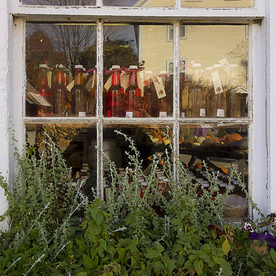 Lovely Lavender - Russells Window by David Stone