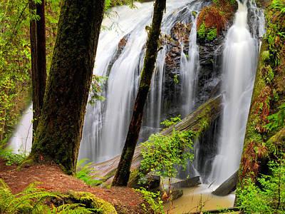 Photograph - Russian Gulch Falls 2 by Leland D Howard