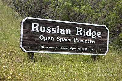 Rights Managed Images - Russian Ridge Open Space Preserve Royalty-Free Image by Jason O Watson