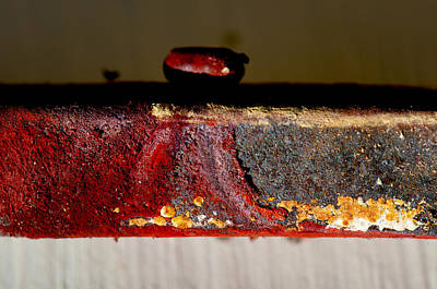 Photograph - Rust Abstract Vi Horizontal by Stephen Anderson