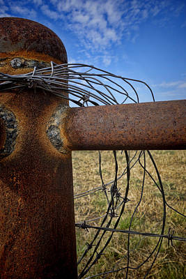 Photograph - Rust And Wire - Photography by Ann Powell