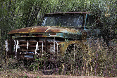 Photograph - Rust Bucket by Amber Kresge