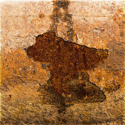Photograph - Rust by Frank Winters