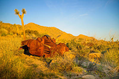 Photograph - Rust In The Dawn Light by Mark Robert Rogers