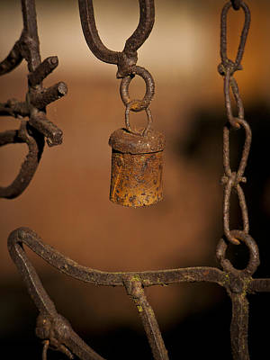 Photograph - Rust by Ron Roberts
