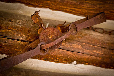 Rust Trapped On A Log - Old Trap - Casper Wyoming Original by Diane Mintle
