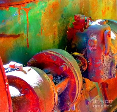 Photograph - Rusted Glory 4 by Desiree Paquette