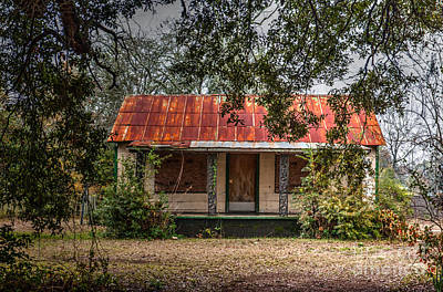 Photograph - Rusted Red Tin Roof by Dale Powell